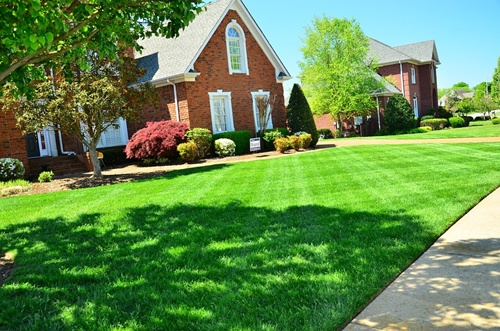 Lawn maintenance in Prosper Texas