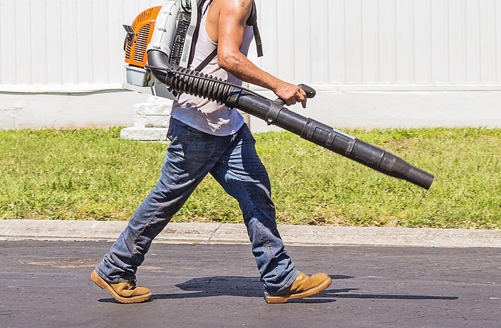 Tips for Buying a Leaf Blower for Your Garden