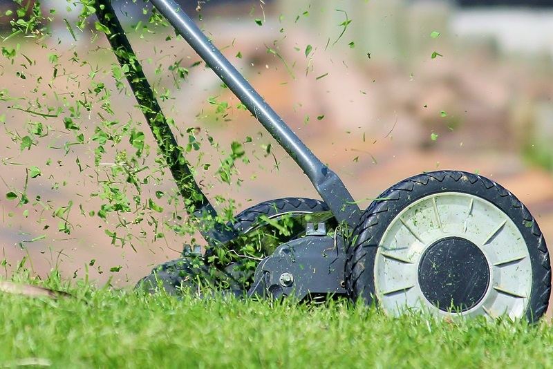 5 Best Tips to maintain a Healthy Lawn