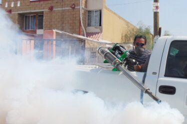 How to Prepare for Pest Control Service